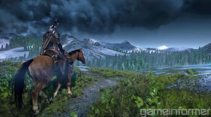 Witcher 3 Field